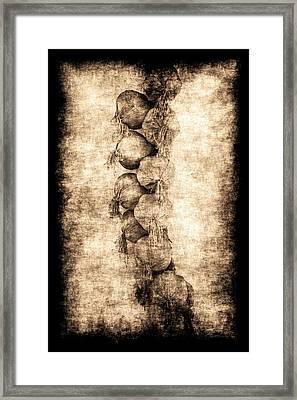 Renasiaance Garlic Framed Print