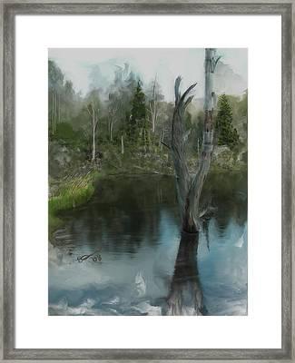 Renewal... Framed Print by Eddie Durrett