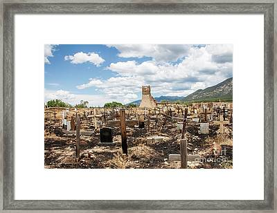 Framed Print featuring the photograph Renewal by Sandy Adams