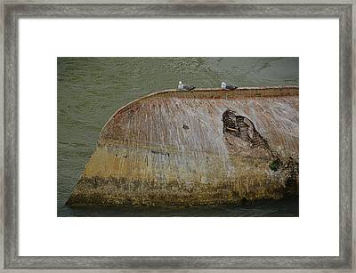Renewed Purpose Framed Print by JAMART Photography