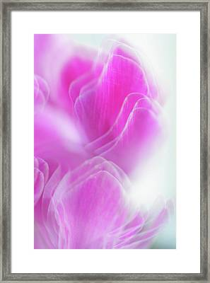Repeating Beauty 1 Framed Print by Jenny Rainbow