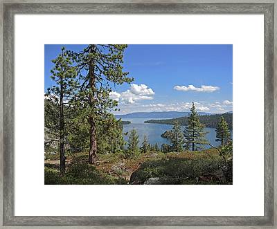 Replete With Beauty Framed Print