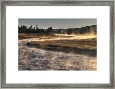 Repose Of Nature Framed Print