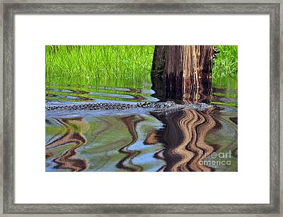 Framed Print featuring the photograph Reptile Ripples by Al Powell Photography USA