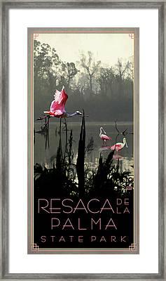 Resaca De La Palma State Park Framed Print by Jim Sanders