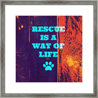 Rescue Is A Way Of Life 2 Framed Print