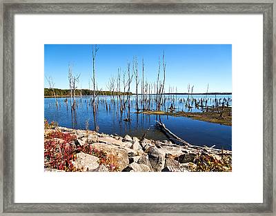 Framed Print featuring the photograph Reservoir by Angel Cher