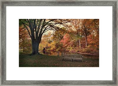 Framed Print featuring the photograph Respite River by Jessica Jenney