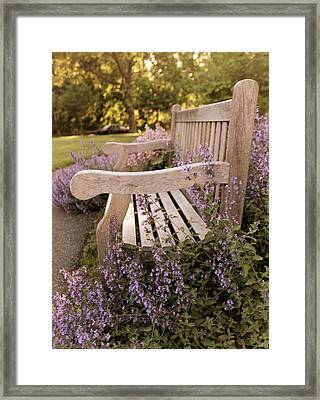 Rest A While Framed Print by Jessica Jenney