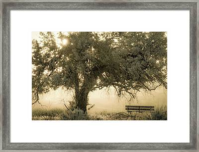 Sit And Stay Awhile Framed Print by Joy McAdams