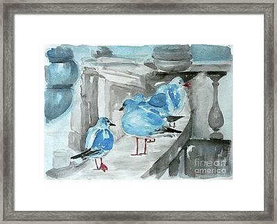 Rest By The Sea Framed Print