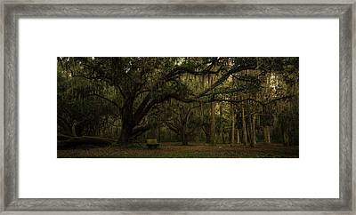 Rest In Ancient Shade Framed Print by Robert Swinson
