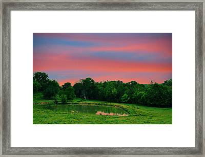 Restful Afternoon Framed Print by Jan Amiss Photography