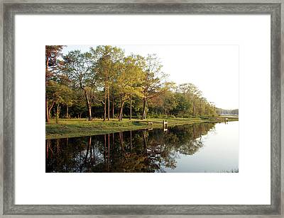 Restful Reflection Framed Print by Roxanne Marshal