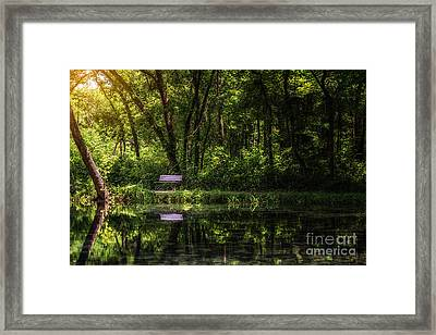 Resting Bench At The Chickasaw National Recreation Area Framed Print by Tamyra Ayles