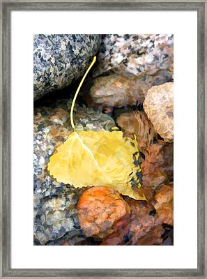 Resting For The Trip Downstream Framed Print
