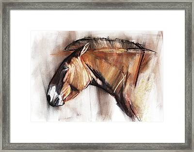 Resting Horse Framed Print by Mark Adlington