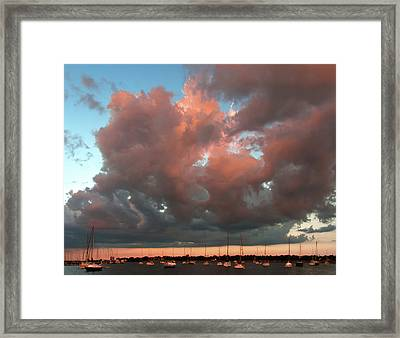 Framed Print featuring the photograph Resting In The Sunset by Carolyn Dalessandro