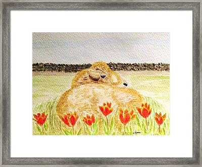 Resting In The Tulips Framed Print by Angela Davies