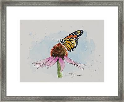Resting Monarch Framed Print