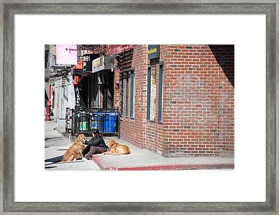 Resting On The Corner Framed Print by Rob Hans