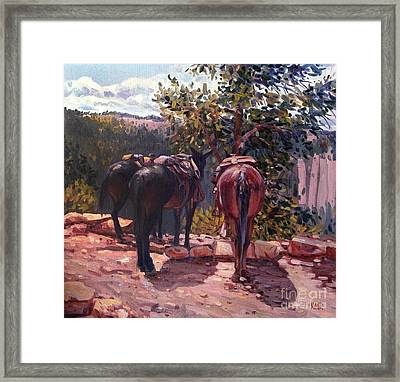 Resting On The Kaibab Trail Framed Print by Donald Maier