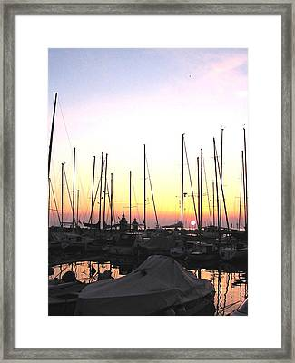 Framed Print featuring the photograph Resting Place by Dragica  Micki Fortuna
