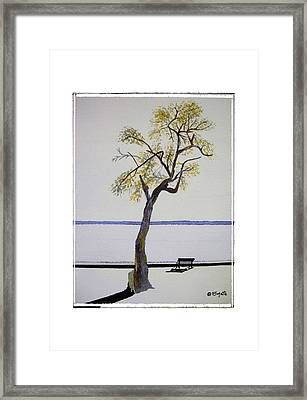 Resting Place Framed Print by Robert Boyette