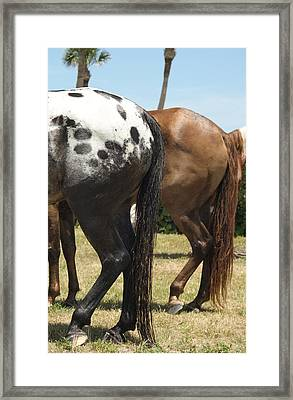 Framed Print featuring the photograph Resting Rears by Lynda Dawson-Youngclaus