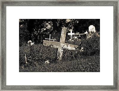 Resting Framed Print by Scott Pellegrin