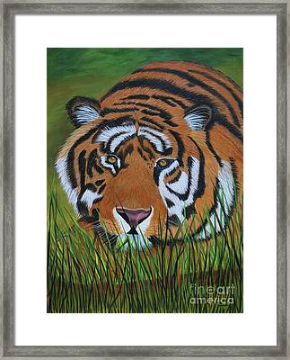 Framed Print featuring the painting Resting Tiger  by Myrna Walsh