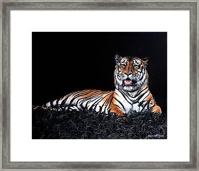 Resting Tiger Framed Print by Susana Falconi