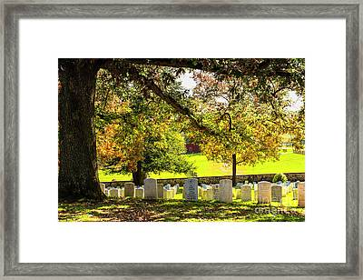 Resting Under The Old Oak Framed Print by Amy Sorvillo