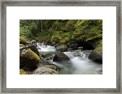 Resting Within The Song Of Water Framed Print by Jeff Swan
