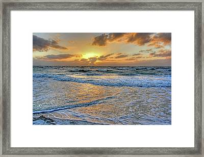 Restless Framed Print by HH Photography of Florida