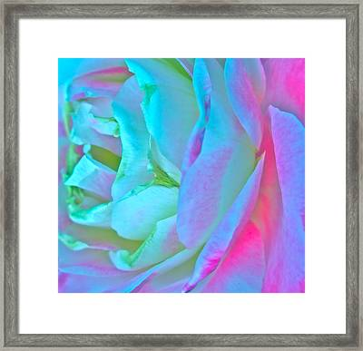 Restless Romantic Framed Print by Gwyn Newcombe