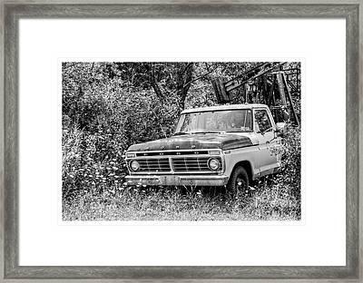 Retirement Ford Truck In Field Framed Print