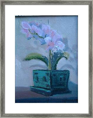 Retirement Orchid...sold Framed Print by Bryan Alexander