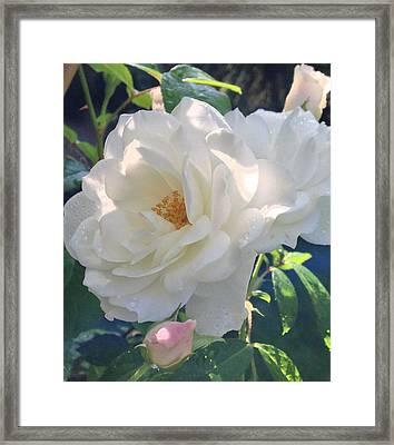 Retrolux Au Naturelle Framed Print