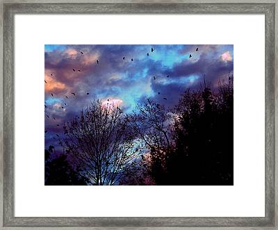 Return Of The Crows Framed Print by Martin Morehead