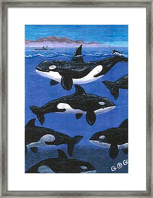 Return Of The Whale Framed Print by George I Perez