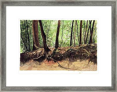 Returning To Your Roots Framed Print by Carla Dabney