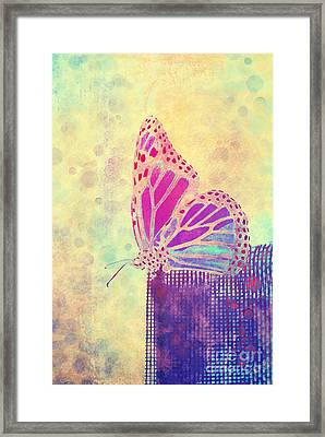 Reve De Papillon - A1108 Framed Print by Variance Collections