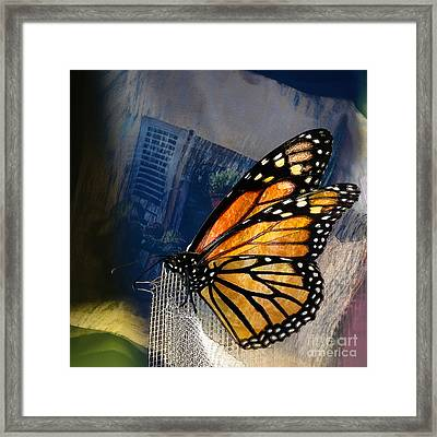 Reve De Papillon  Framed Print by Variance Collections