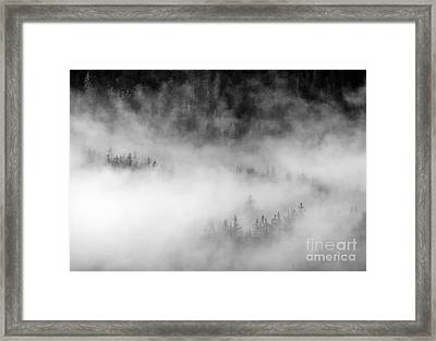 Revealed By The Light Framed Print by Mike Dawson
