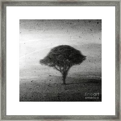 Revelation - 02b Framed Print by Variance Collections