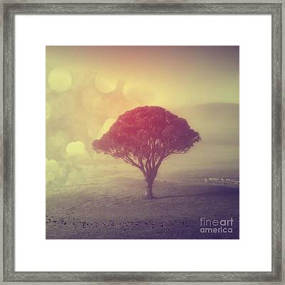Revelation - 09 Framed Print by Variance Collections