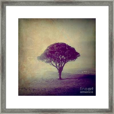 Revelation - 113vt Framed Print by Variance Collections