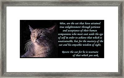 Revere Cat Framed Print