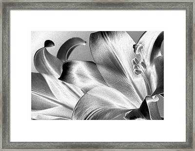 Framed Print featuring the photograph Reverse by Steven Huszar